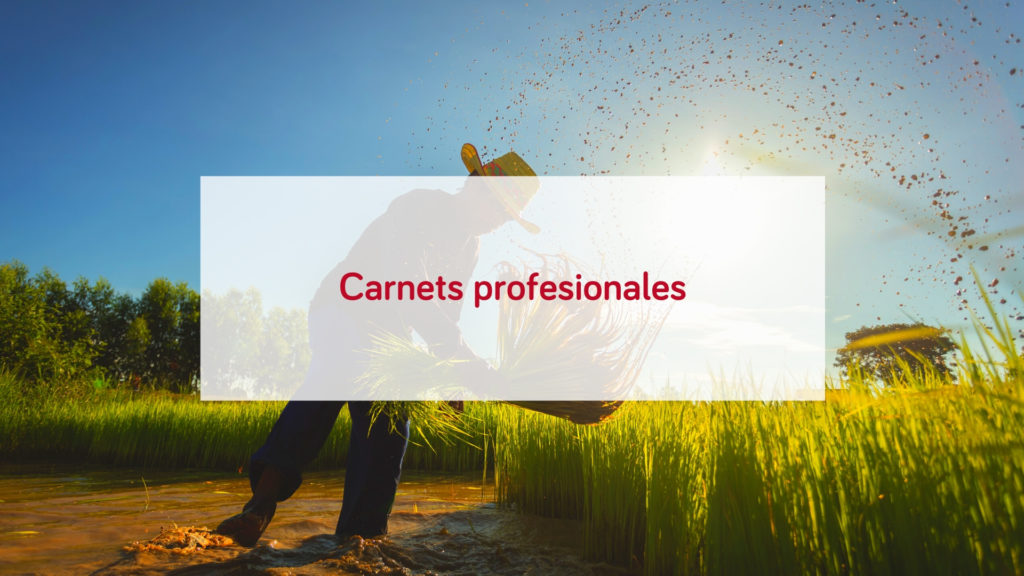 carnet-profesional-fitosanitario-caldera-manipulador-alimentos-transportistas-carretilla