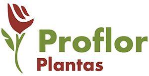 proflor plantas